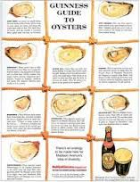 Guiness Guide of Oysters