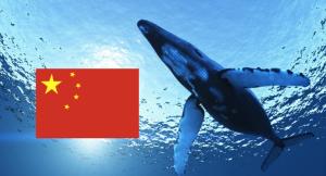 Whale-China